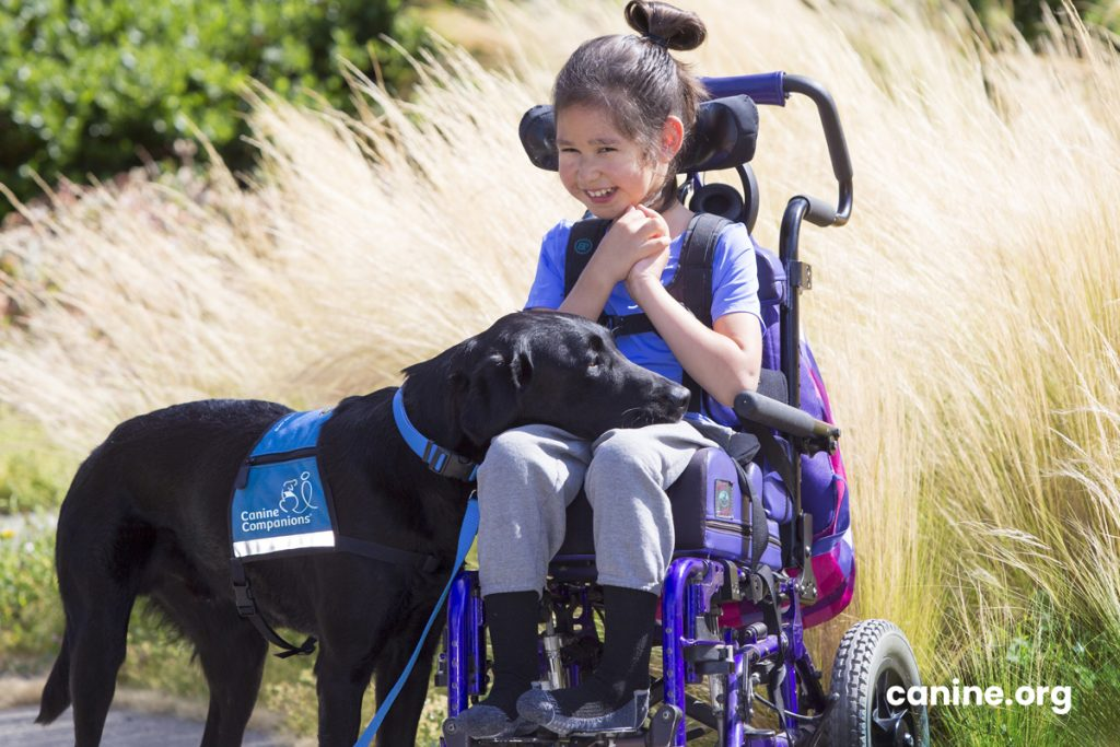 disable kid with her service dog next to her