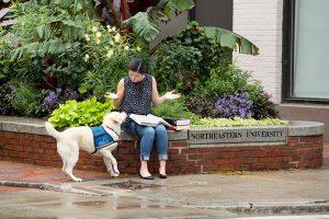 Hearing dog alerting graduate