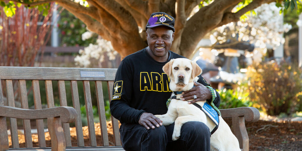 Canine Companions service dog resting on lap of black american veteran sitting on wooden bench in a park