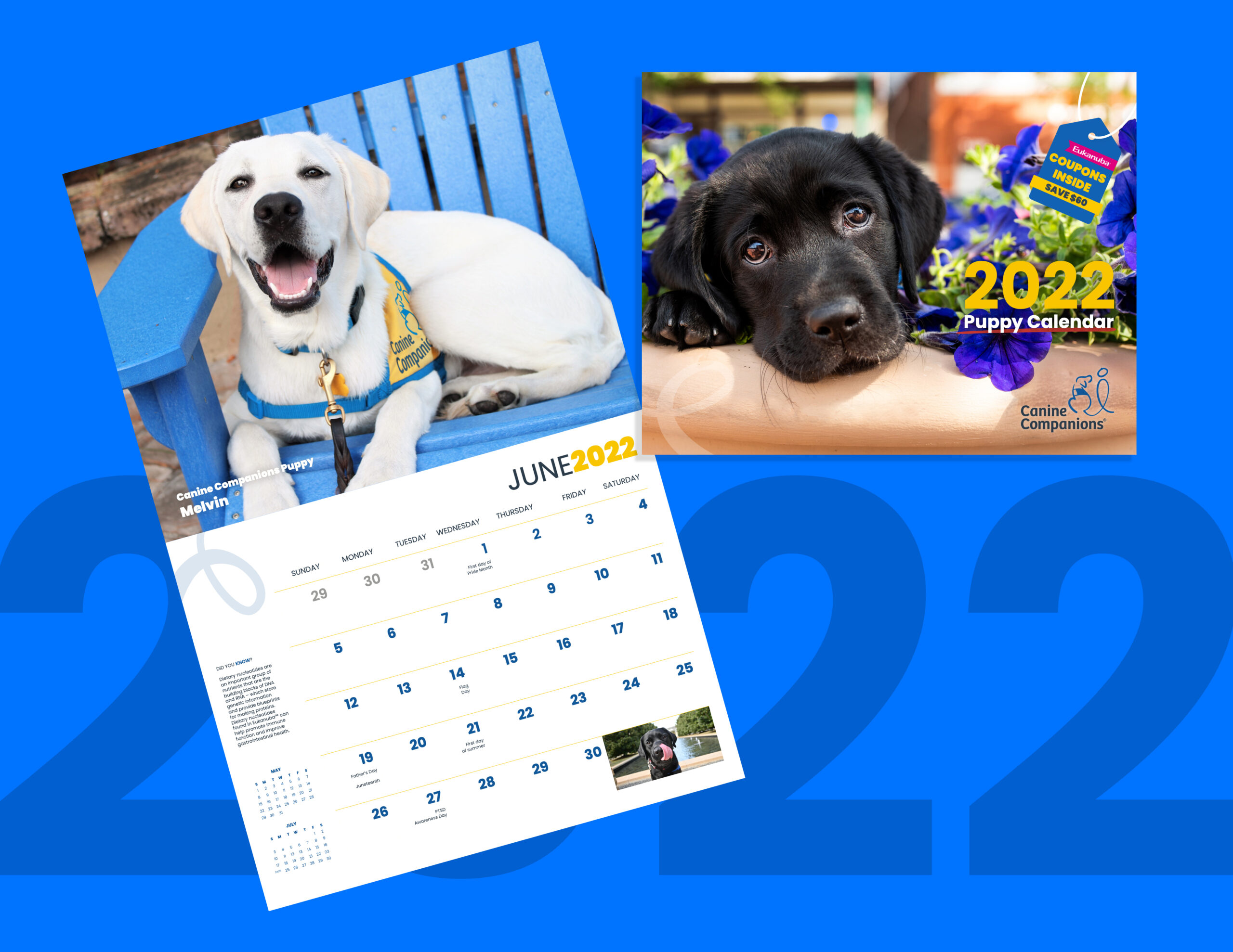 image showing the 2022 canine companions puppy calendar