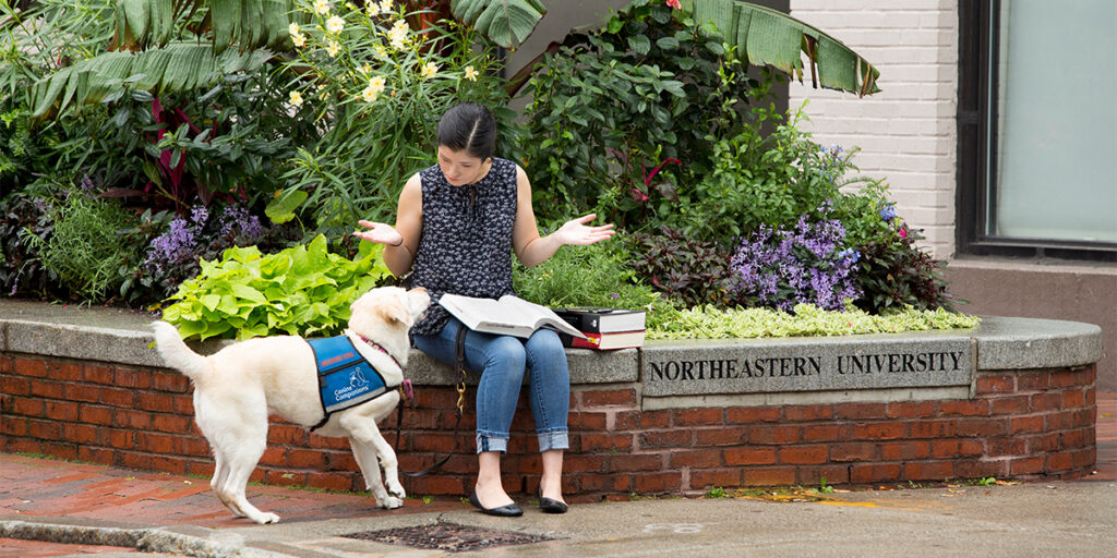 Canine Companions hearing dog alerting its graduate